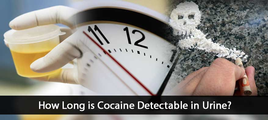 How Long is Cocaine Detectable Cover Image