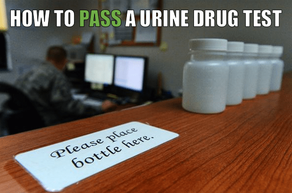 how to pass a urine drug test in 24 hours