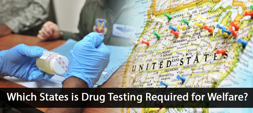 US States with drug test