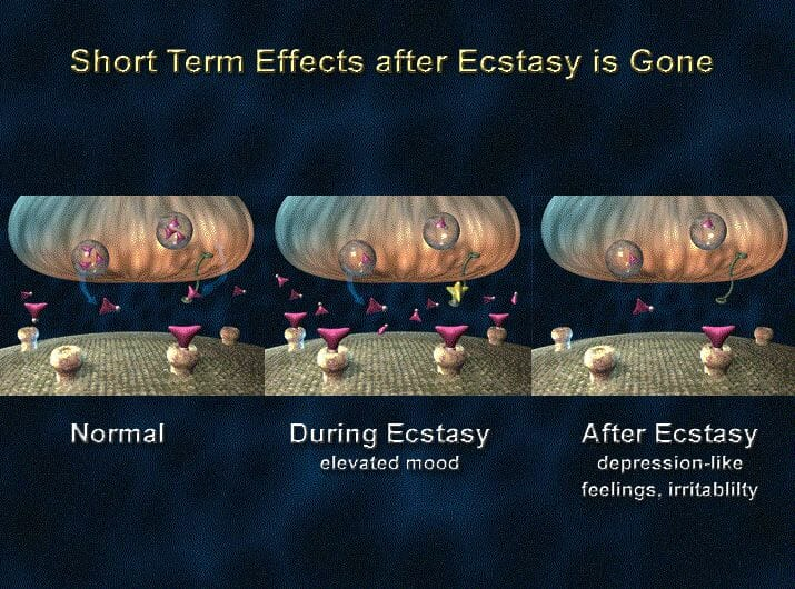 ecstasy short term effects