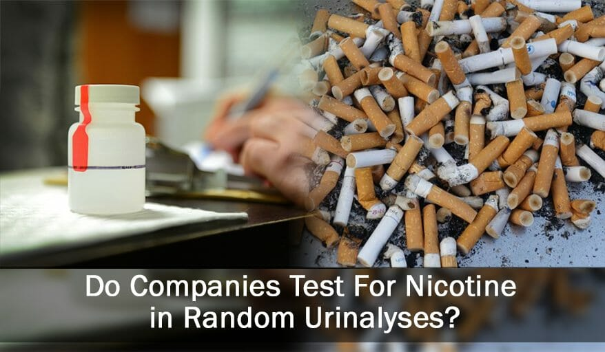 Nicotine and urinalysis