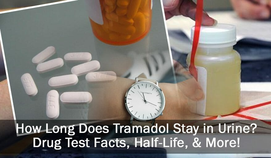 How Long Does Tramadol Actually Stay In Your Urine