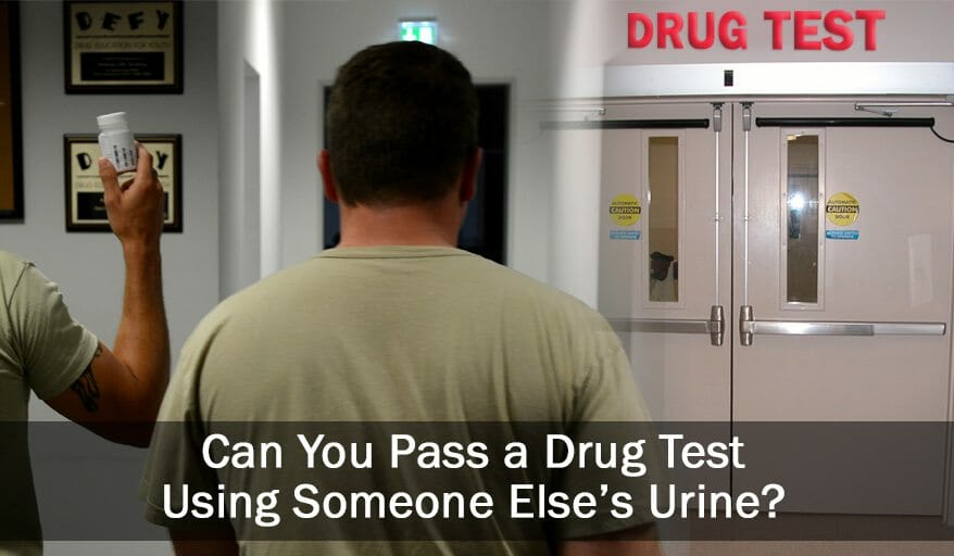 using someone else's urine for testing