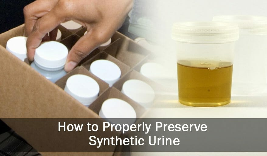 preserving synthetic urine properly