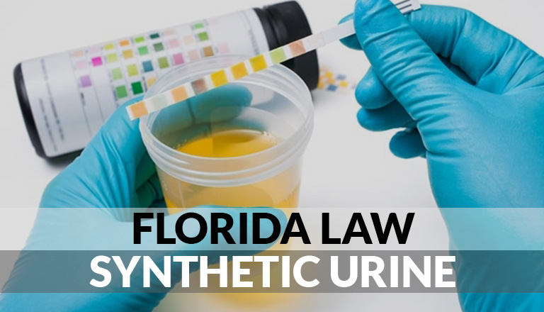 Florida Law Synthetic Urine featured image