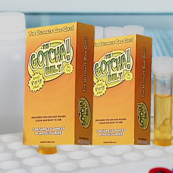 Gotcha Belt Synthetic Urine
