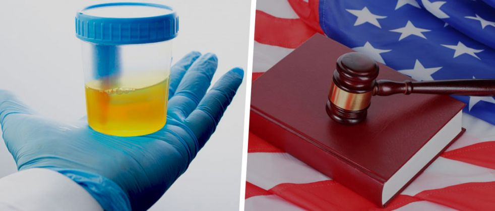 Your guide to Synthetic Urine Bans in the United States